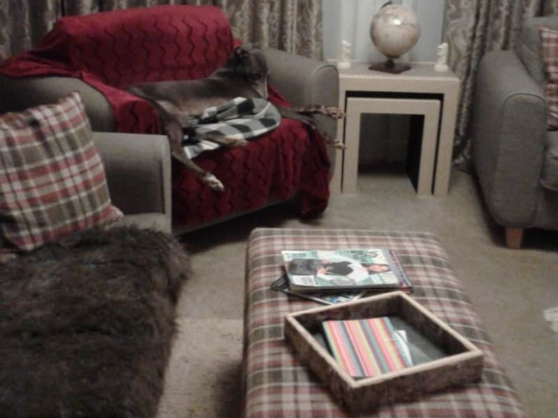 Housesitting assignment in Tallington, United Kingdom