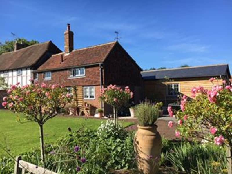 Housesitting assignment in Lewes, United Kingdom