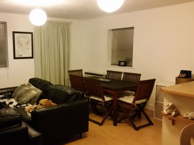 Housesitting assignment in Penge, United Kingdom