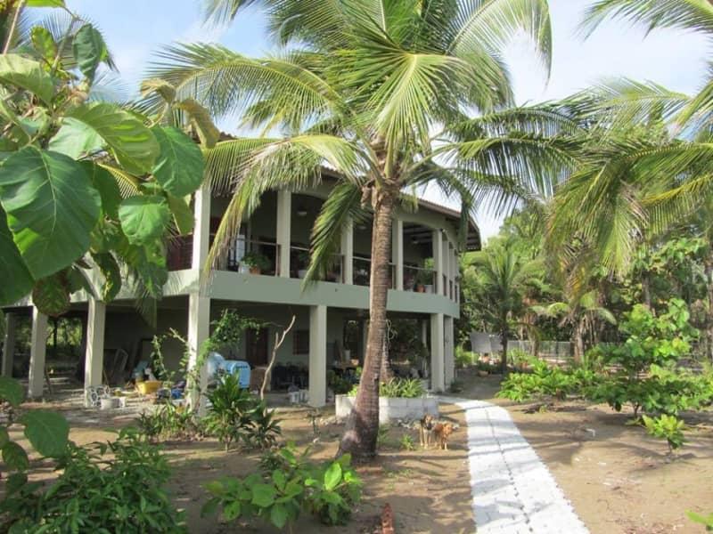 Housesitting assignment in Santiago de Veraguas, Panama