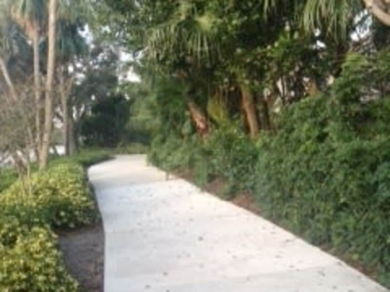 Housesitting assignment in Weston, Florida, United States