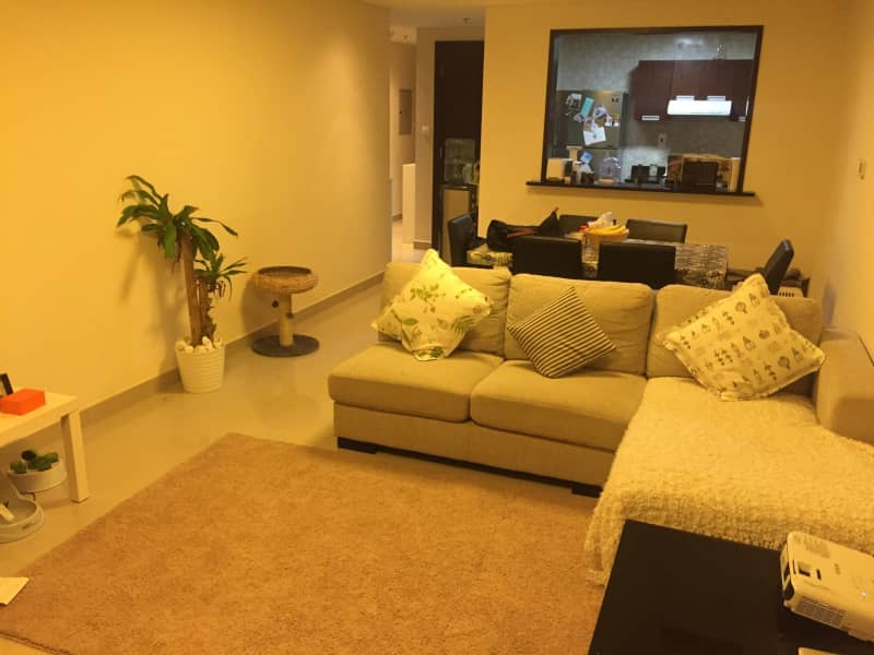 Housesitting assignment in Dubai Sports City, United Arab Emirates