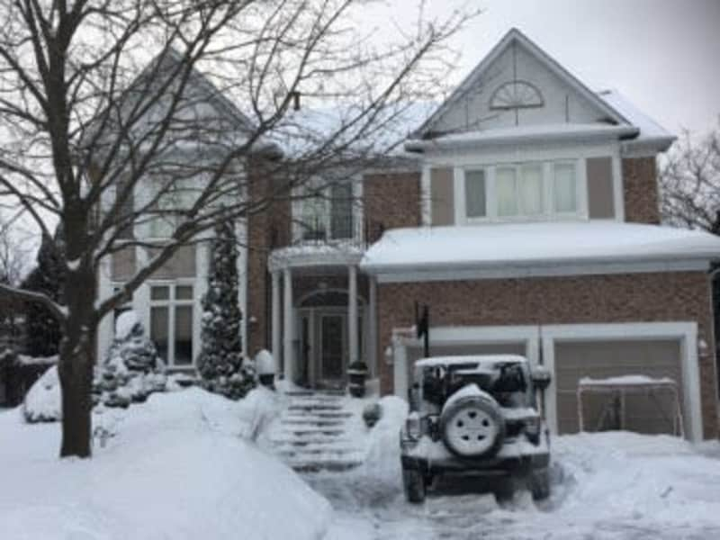 Housesitting assignment in Pickering, Ontario, Canada