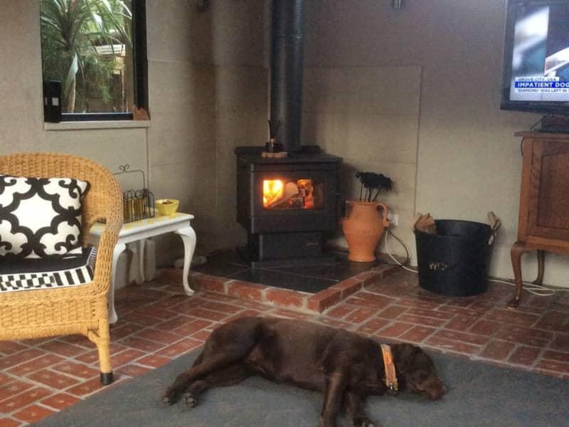 Housesitting assignment in Ballarat Central, Victoria, Australia