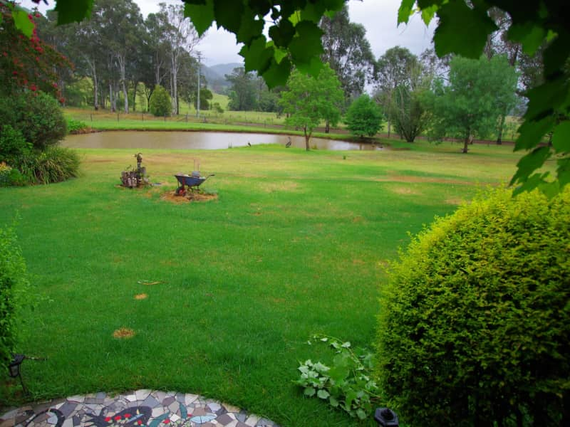 Housesitting assignment in Wingham, New South Wales, Australia