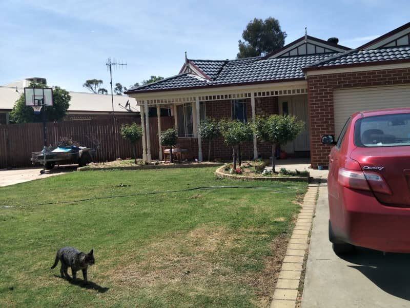 Housesitting assignment in Tocumwal, New South Wales, Australia