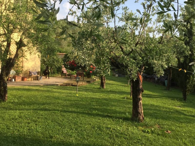 Housesitting assignment in Florence, Italy