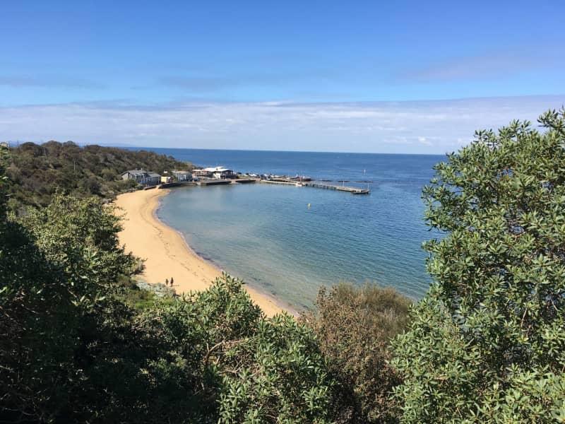 Housesitting assignment in Black Rock, Victoria, Australia