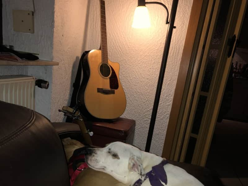 Housesitting assignment in Föckelberg, Germany