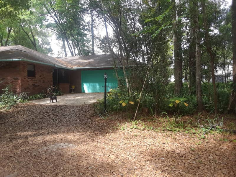 Housesitting assignment in DeLand, Florida, United States