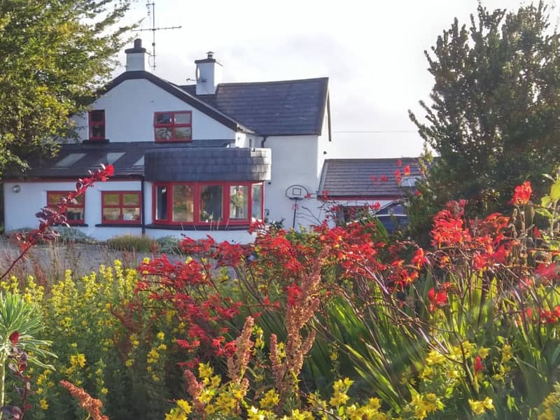Housesitting assignment in Cork, Ireland