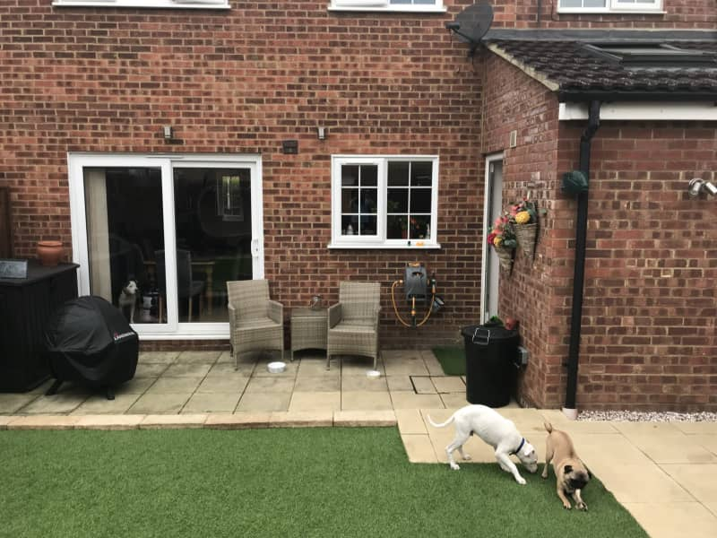 Housesitting assignment in Biggleswade, United Kingdom