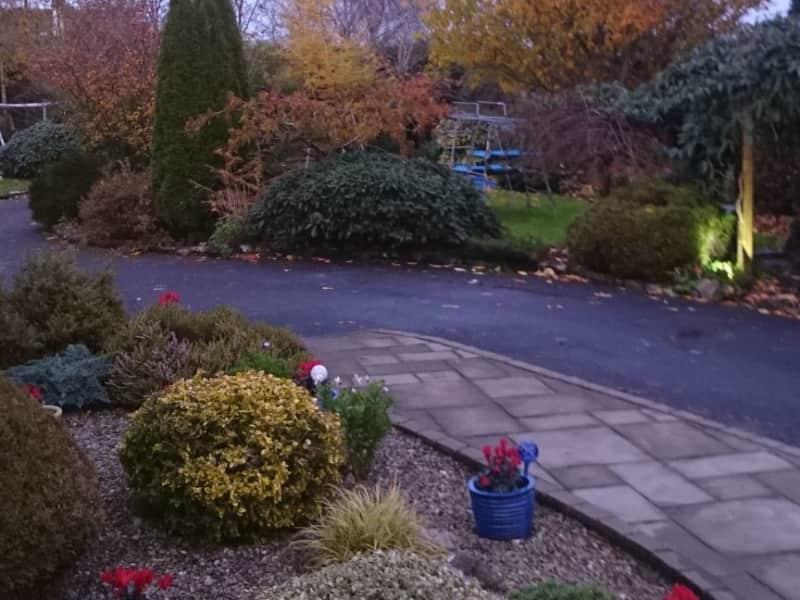 Housesitting assignment in Clarinbridge, Ireland