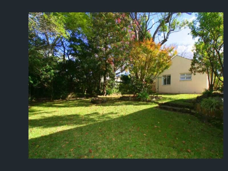 Housesitting assignment in Roseville, New South Wales, Australia