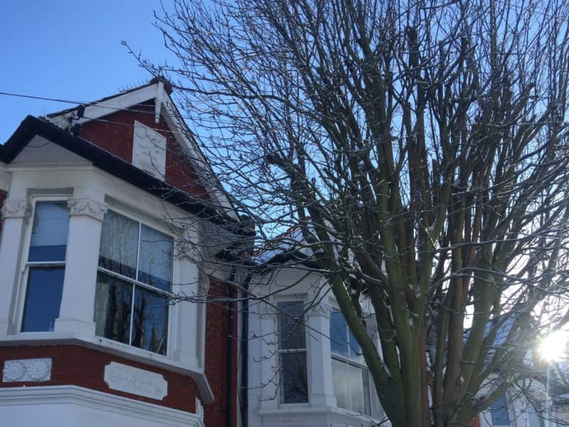 Housesitting assignment in Fulham, United Kingdom