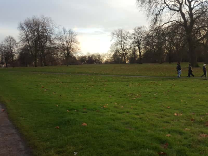 Housesitting assignment in Perivale, United Kingdom