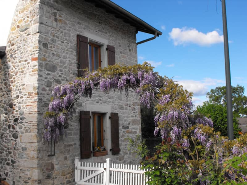 Housesitting assignment in Gex, France