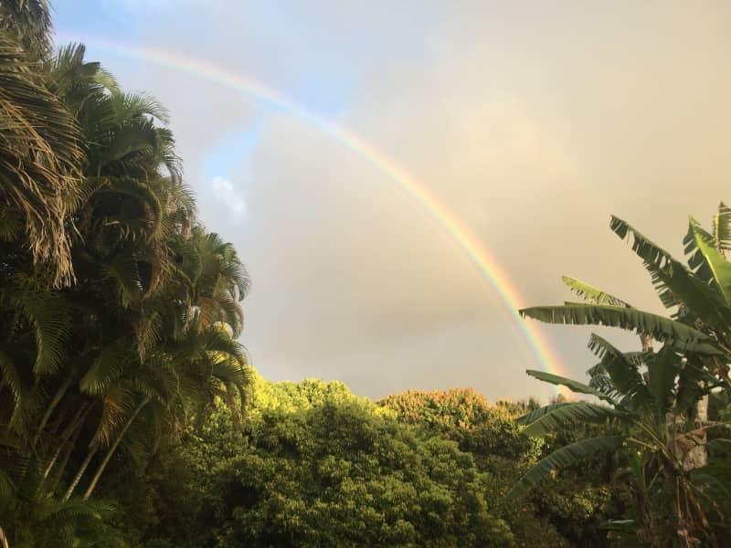 Housesitting assignment in Kīlauea, Hawaii, United States