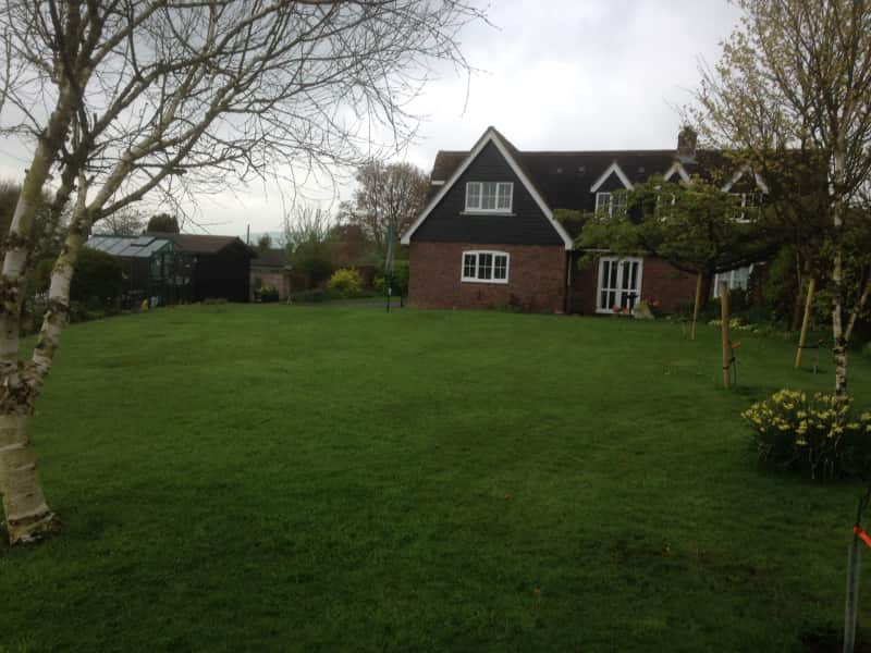 Housesitting assignment in Sturminster Newton, United Kingdom