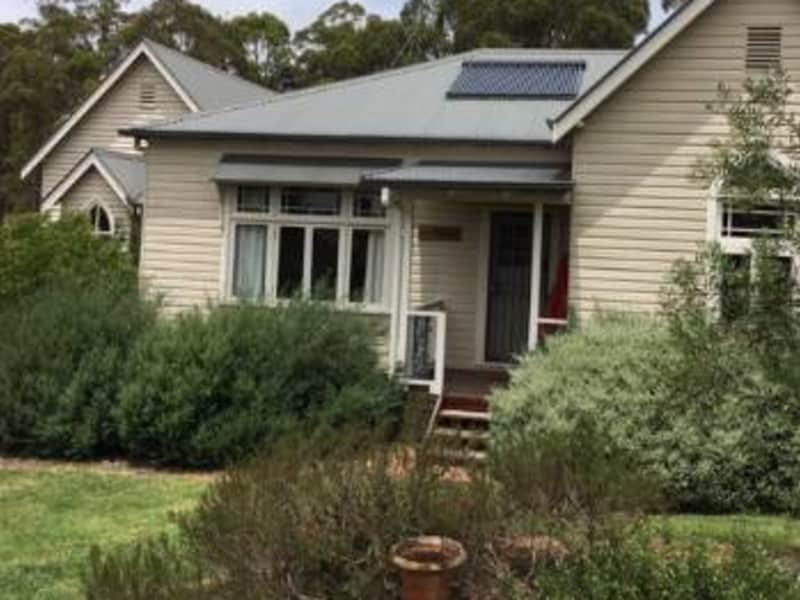 Housesitting assignment in Armidale, New South Wales, Australia