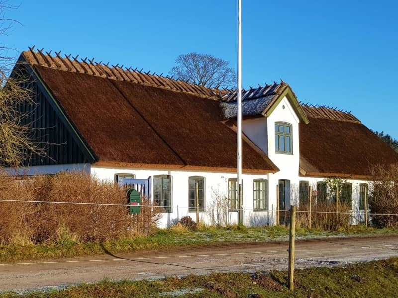 Housesitting assignment in Slangerup, Denmark