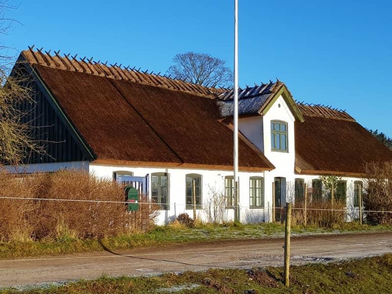 Housesitting assignment in Slangerup, Denmark