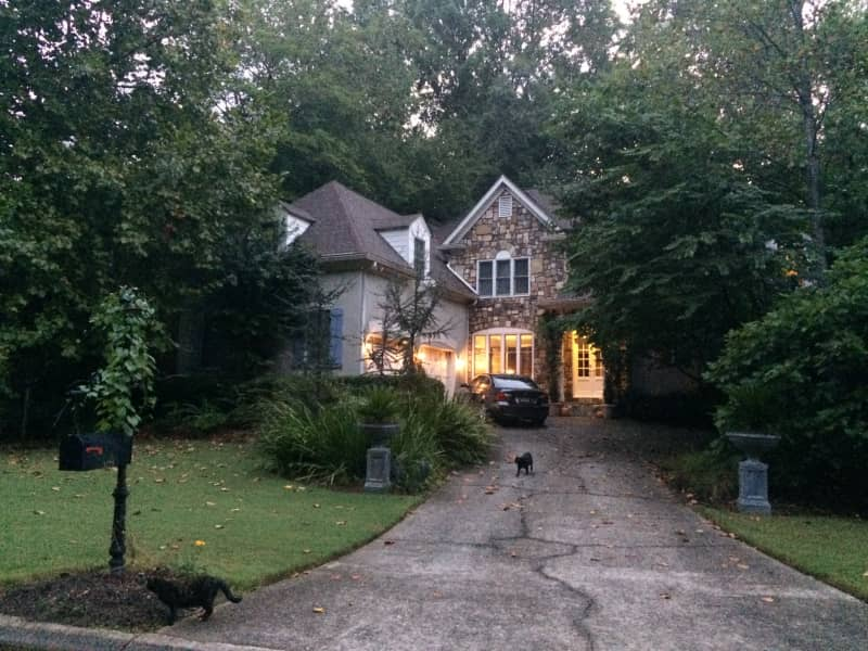 Housesitting assignment in Roswell, Georgia, United States