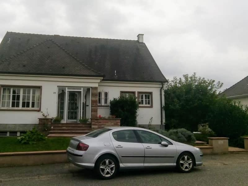 Housesitting assignment in Lingolsheim, France