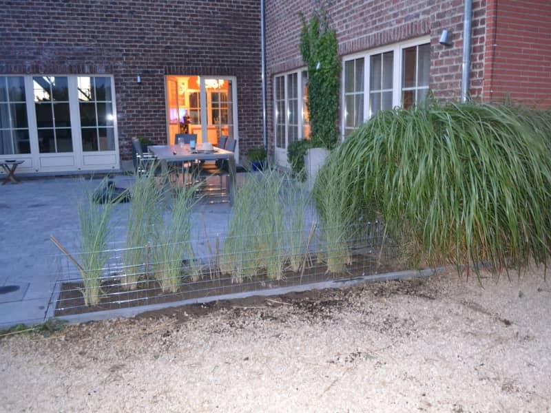 Housesitting assignment in Kampenhout, Belgium