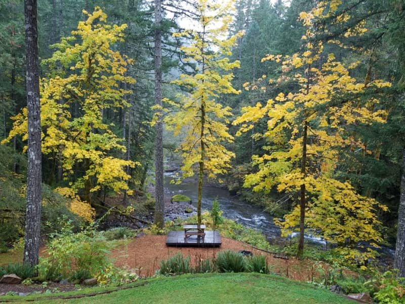 Housesitting assignment in Carson, Washington, United States