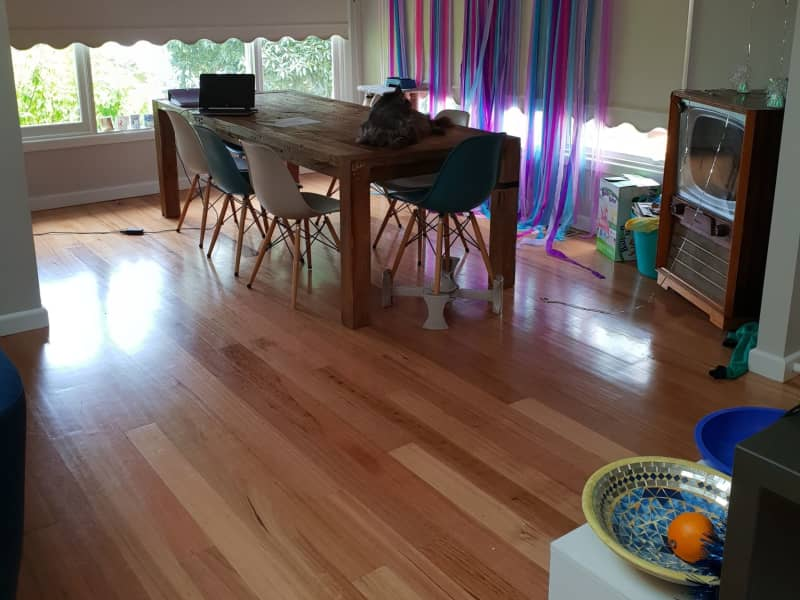 Housesitting assignment in Ringwood East, Victoria, Australia