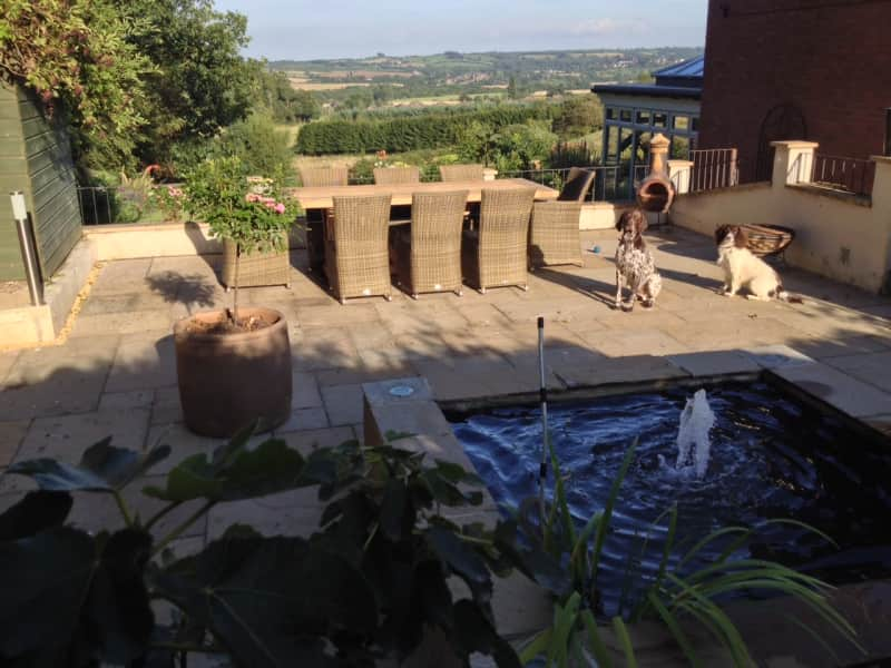 Housesitting assignment in Swadlincote, United Kingdom