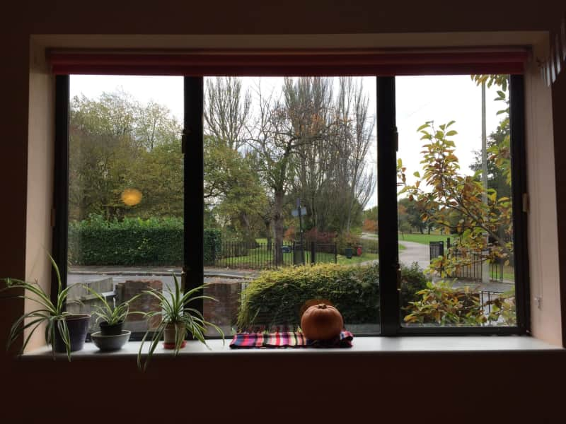 Housesitting assignment in Lewisham, United Kingdom