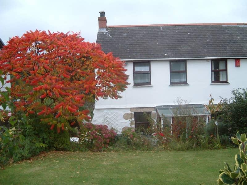 Housesitting assignment in Penzance, United Kingdom