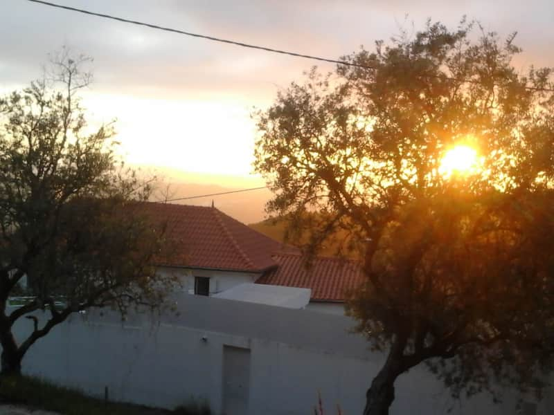Housesitting assignment in Penela da Beira, Portugal