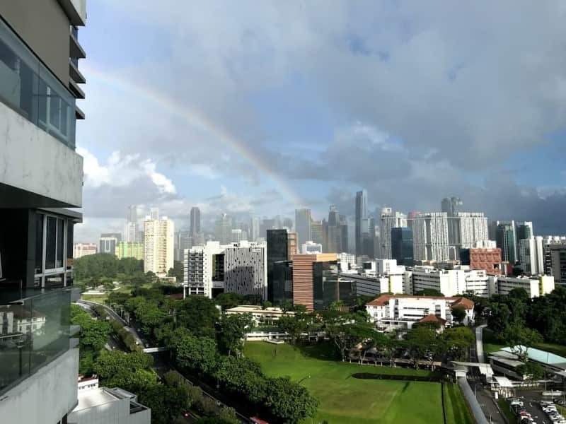 Housesitting assignment in Tiong Bahru Estate, Singapore