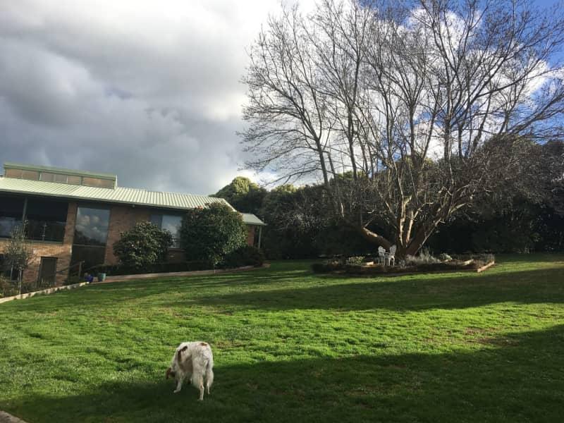Housesitting assignment in Drouin, Victoria, Australia