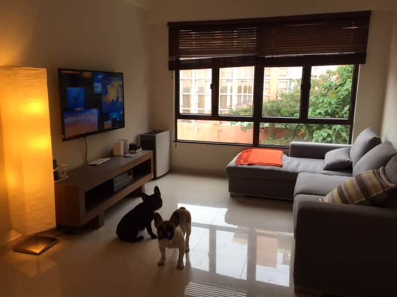 Housesitting assignment in Kowloon, Hong Kong