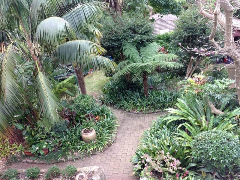 Housesitting assignment in Killara, New South Wales, Australia