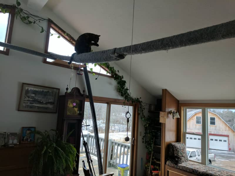 Housesitting assignment in Loudon, New Hampshire, United States