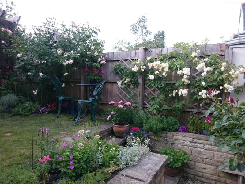 Housesitting assignment in Faringdon, United Kingdom