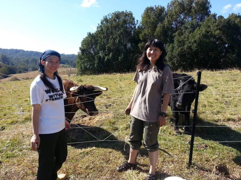 Yu shan & Shan yi from Nimbin, New South Wales, Australia