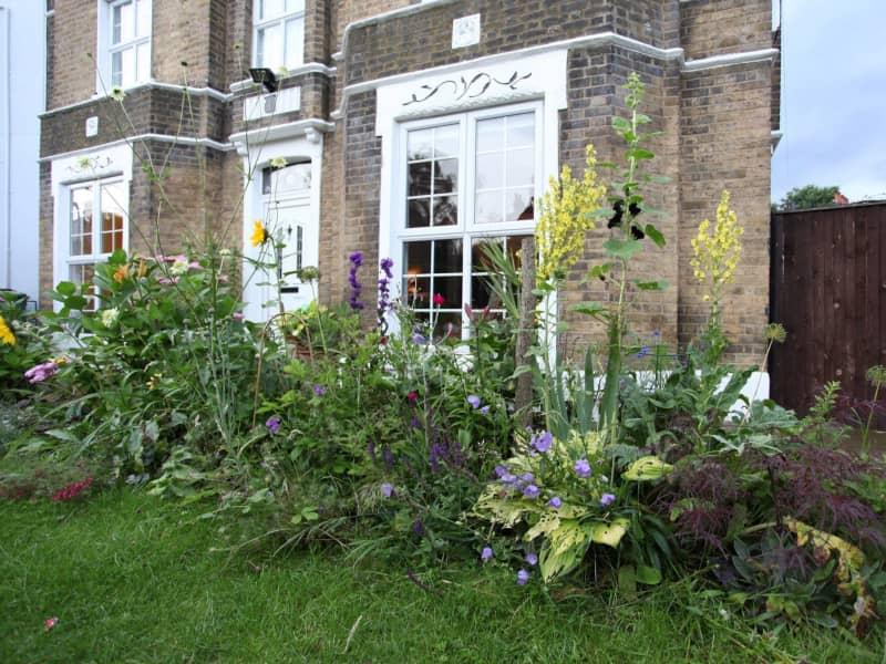 Housesitting assignment in Peckham, United Kingdom