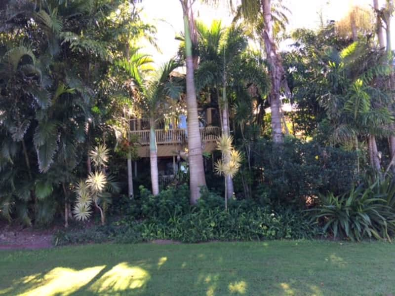 Housesitting assignment in Springwood, Queensland, Australia