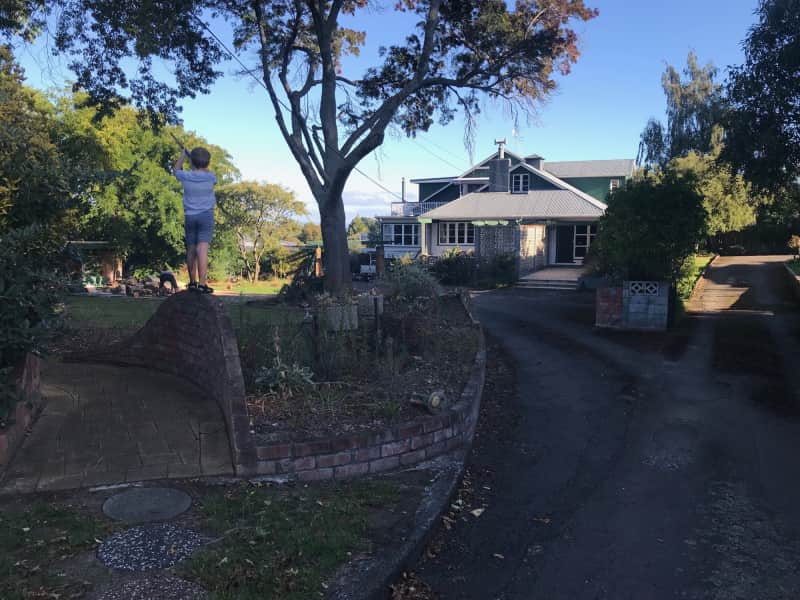 Housesitting assignment in Feilding, New Zealand