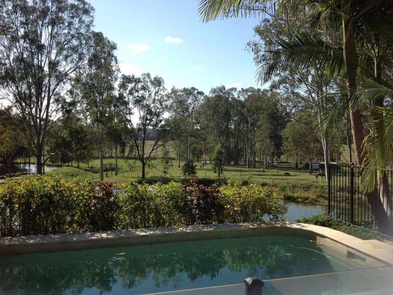 Housesitting assignment in Sunshine Coast, Queensland, Australia