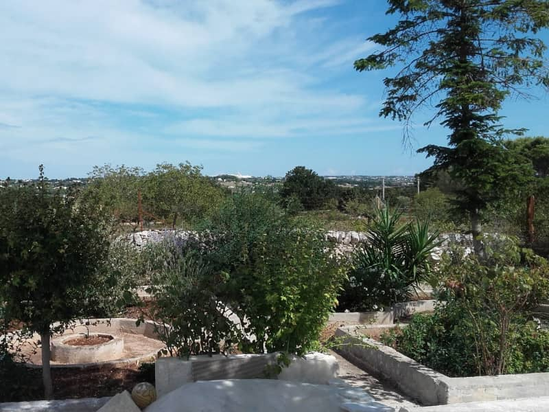 Housesitting assignment in Martina Franca, Italy