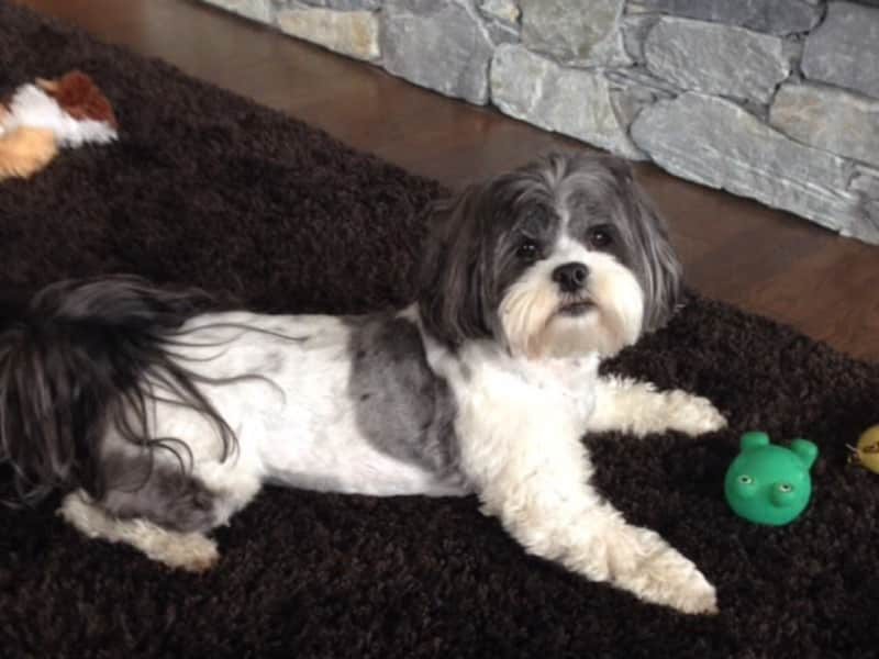 Darla & Jim from Nanaimo, British Columbia, Canada