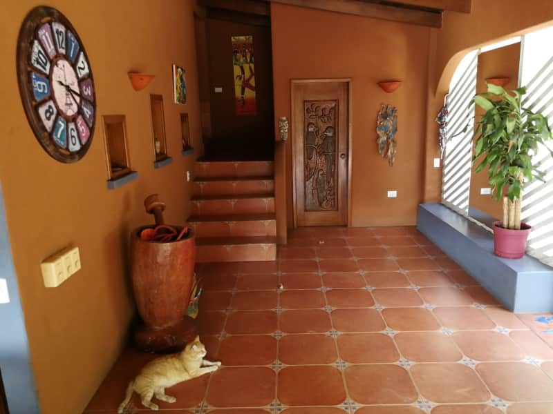 Housesitting assignment in Tamarindo, Costa Rica