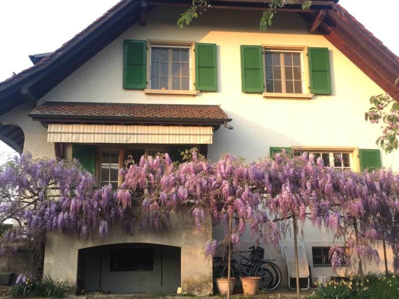 Housesitting assignment in Crans, Switzerland